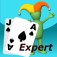 Blackjack Expert for android